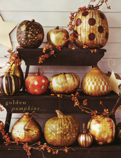somagnolia:  great idea for pumpkins! I am definitely going to try this idea from dressdesigndecor.blogspot.com I will let you know how it goes!