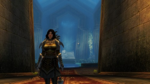Guild Wars 2: New patch fixes storyline steps, profession abilities