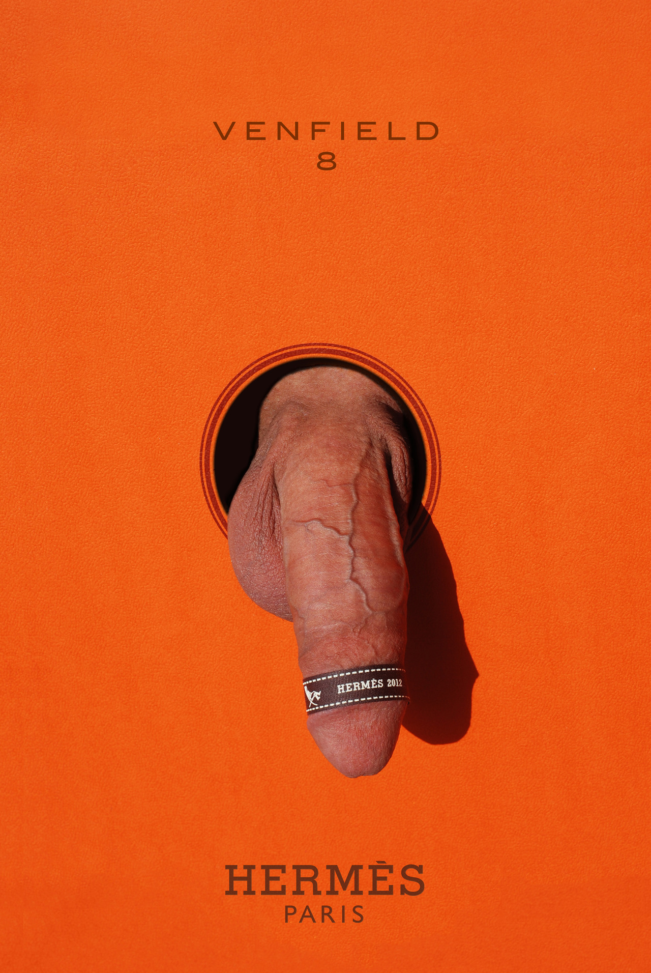 venfield8:  Designer Dick, HERMES, 2012