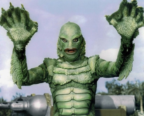 Creature from the Black Lagoon (1954)  I'm going to start to resemble the Creature soon. I've been pumping water out of my crawlspace and standing in tsunami like rains - loading sandbags and fixing a French drain.  Nothing quite like the peace and tranquility of living in the mountains. Someone wanna build me a weather dominator so I can have a bit of rest …