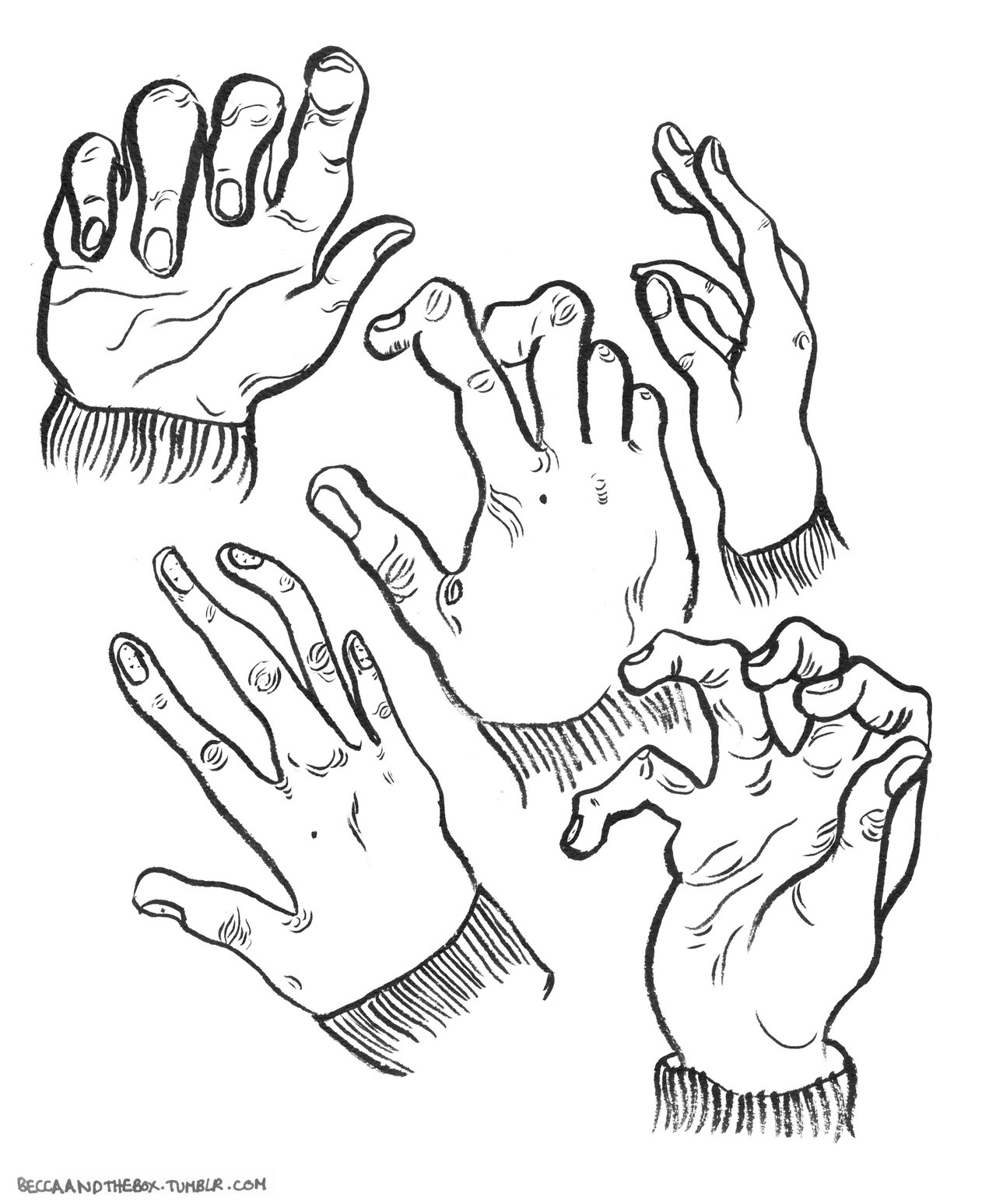 Did some hand studies a while ago to destress and help me lose my fear of drawing straight onto paper with no plan.