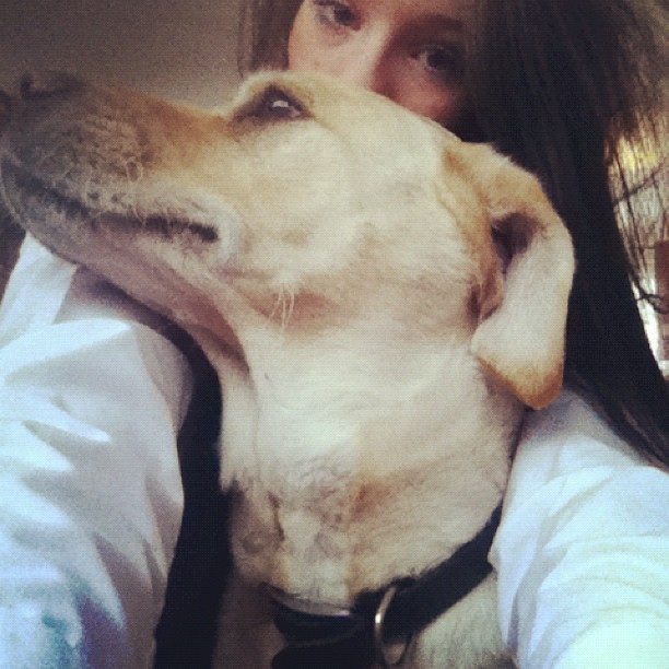 listen-hard:  Puppy dog #blue #cuddles #uniform #woo  (Taken with Instagram)