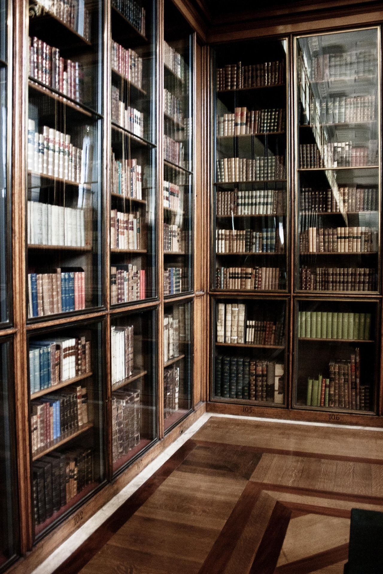 Bookshelf in the British Museum, London.
