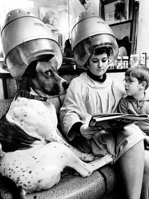 theniftyfifties:  A family outing to the hair salon, 1950s.