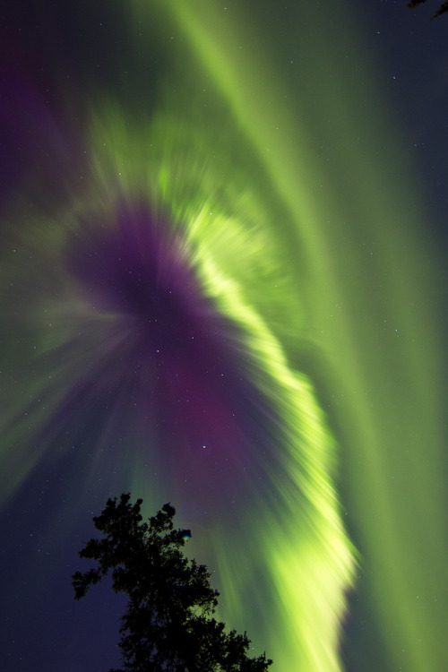 mothernaturenetwork:  Photo of the day: A glowing burst of green aurora lights up the sky in the early hours of Oct. 1 above Whitehorse, Yukon, Canada. The light show was the result of a coronal mass ejection that erupted from the sun 3 days earlier. As long, dark winter nights descend on the northern hemisphere, aurora lovers in far north towns and cities will have plenty of opportunity to witness these stunning displays. The peak time to view auroras occurs between 11 a.m. and 2 a.m., and the most active displays occur in the equinox months of September and March.