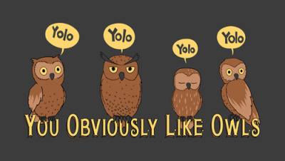 according2mmay:  My obsession of the day, OWLS.