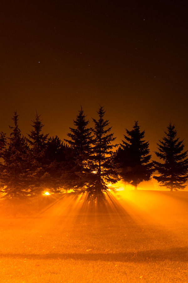 lori-rocks:   Light through the fog, Ottawa, Canada, by Charles Williams