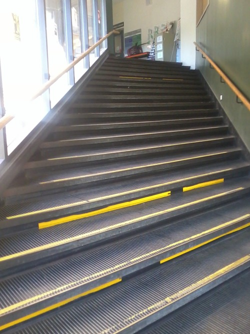 The infamous crooked stairs at my university. Because fuck you, that's why.