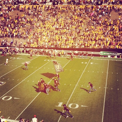 Colorado Buffaloes (Taken with Instagram at Ralphie The Buffalo)