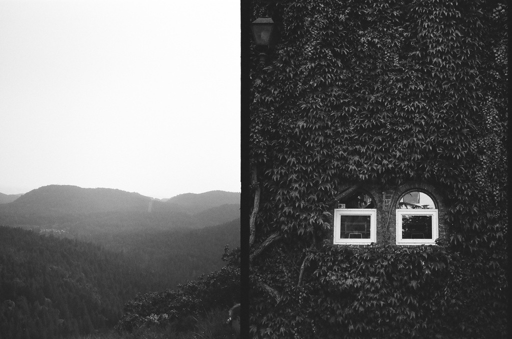 View / Views  Olympus Pen EE S | Ilford 100  Victoria, British Columbia, Canada  Half frame cameras are awesome.