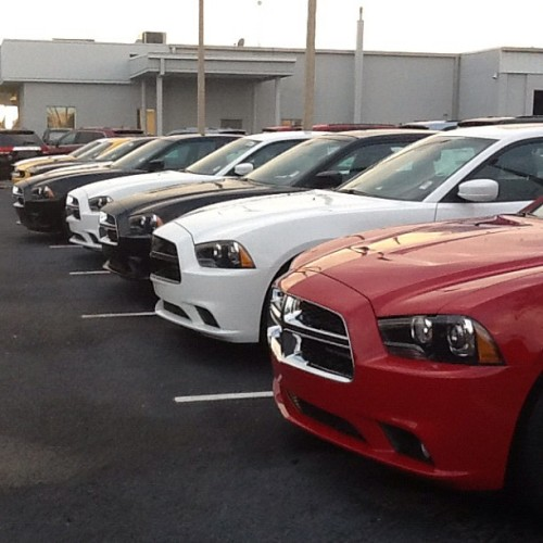Charging line! #dodge #orlandododge #charger #srt #srt8 #orlandododgechyslerjeep #jeep #chrysler  (Taken with Instagram)