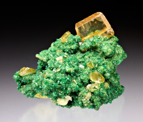 mineralia:  Wulfenite with Adamite from Namibia by Dan Weinrich