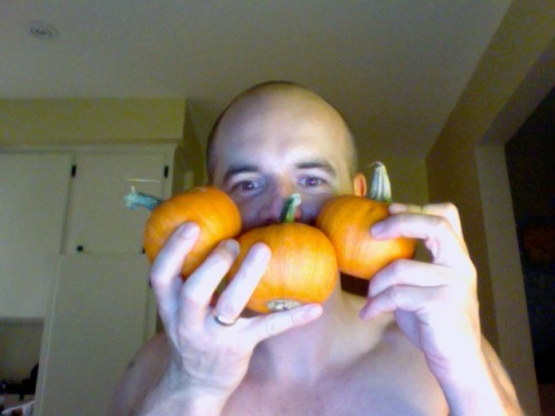 Day 9. Halloween fast approaching, and the arrival of mini pumpkins.  http://www.exitpapers.com/