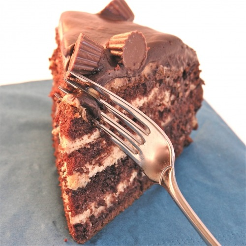 Peanut Butter Cup Layer Cake - Recipe here