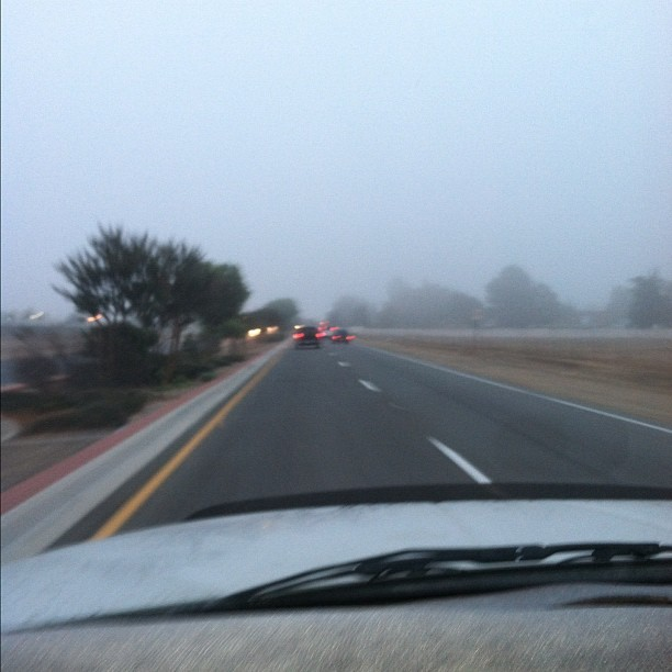 Look at all the #fog there was on my way to school. 🙀 #road #scary #eerie #instagram #driving #weather #bizarre (Taken with Instagram)