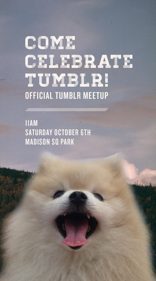 EVERYONE! I am going to the OFFICIAL TUMBLR MEETUP on Saturday in NYC! We will meet around 5th and 24th at 11 am!  RSVP HERE WHO WANTS TO HANG OUT WITH TOMMYPOM?? Your partying pal, TommyPom