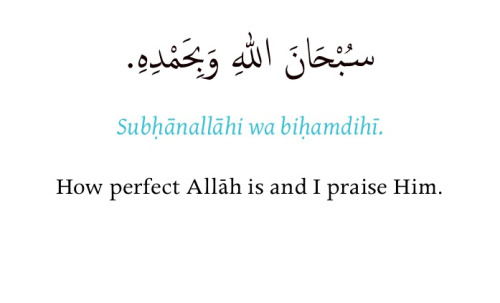 : the ruku' & sujud is just for Allah.