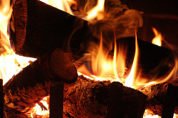 fire Romantic Camping bonfires wood burning fire place