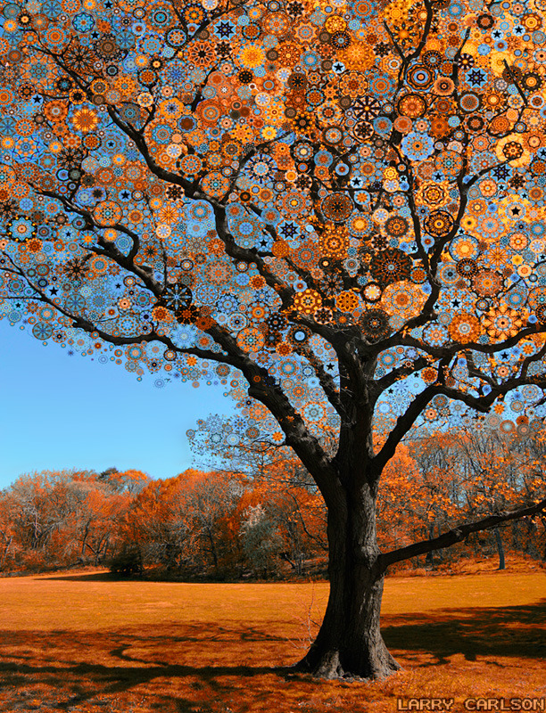 LARRY CARLSON, Orange Star Tree, digital photography, 2010.