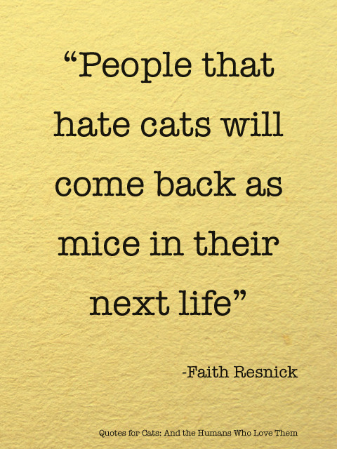 People that hate cats will come back as mice in their next life. via Quotes for Cats