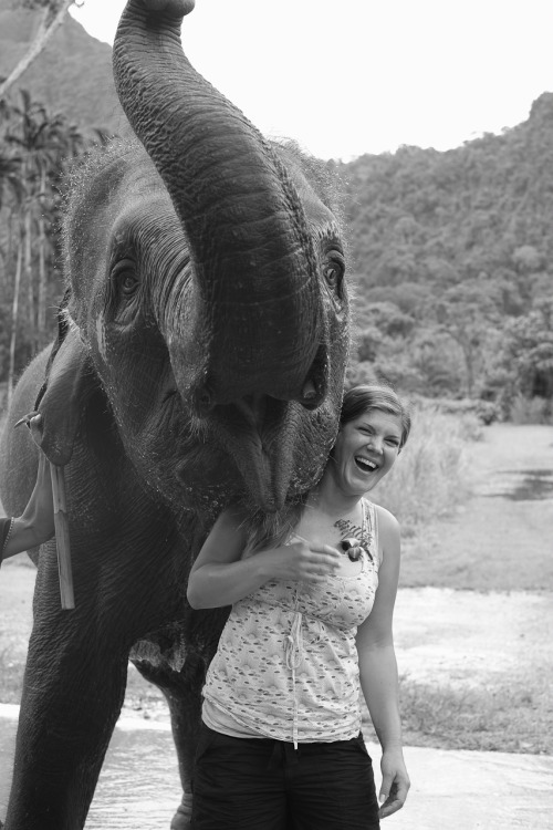 Happy Elephant and girl - Elephant Hills Camp in Thailand