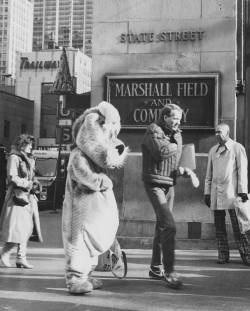 Wild animal roams downtown Chicago. Photographed outside of Marshall Field and Company, December 11, 1981. Photograph by John McCarthy. Want a copy of this photo?  > Visit our Rights and Reproductions Department and give them this number: ICHi-51770 Connect with the Museum