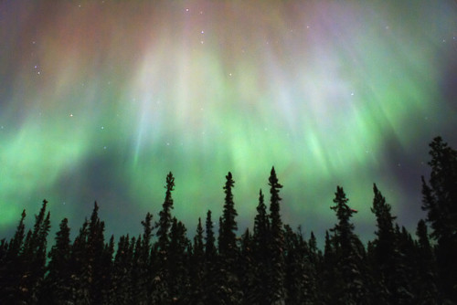 theautumneffects:  Northern Lights, Yukon, Canada by Studiolit on Flickr.
