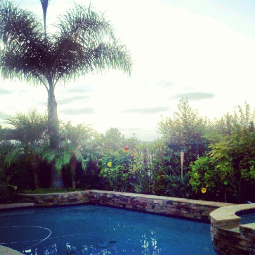 My own personal paradise. #home #carlsbad #california (Taken with Instagram)