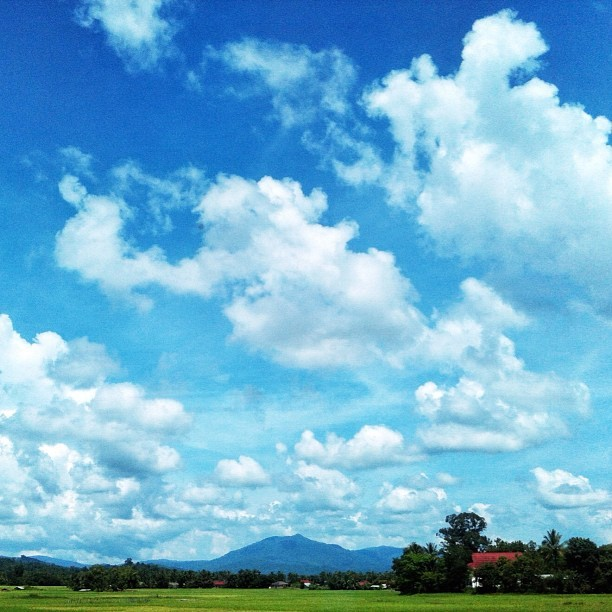 landscape I saw on the road to Vang Vieng | #photography #foto #photos #lao #iamdreamcatcher #travel #voyage (Taken with Instagram)
