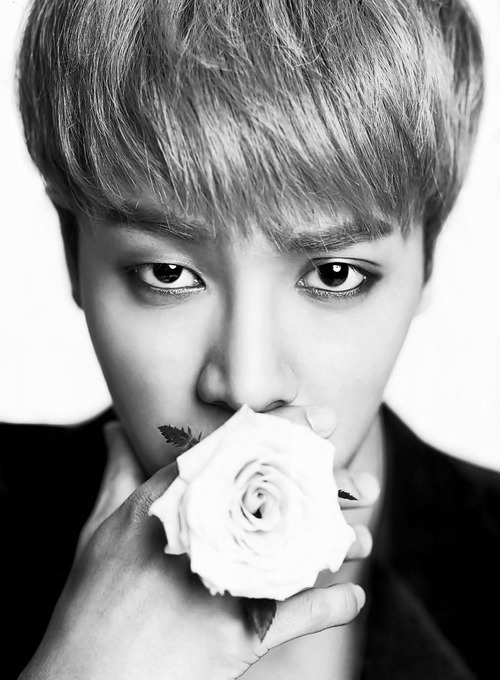 gikwang ah! you look good with rose too <3 | follow me now http://aniilovetosmile.tumblr.com