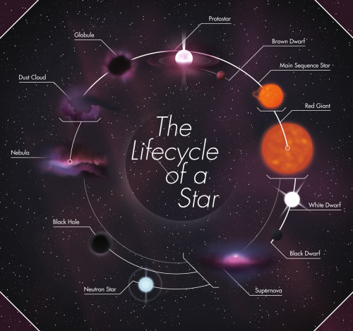 spaceplasma:  The Lifecycle of a Star // Jiggling Atoms The private view was last night and it was such a success! Thank to everyone who came, it was totally aces - the cocktails were nice too. Here's the piece I submitted, originally it had a chunk of text under each stage of the stars lifecycle but removed it all last minute! Didn't want it to be that technical.