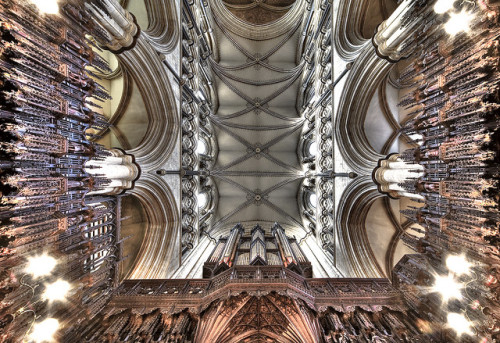 Beverley Minster, Yorkshire whererosesbloom:  Vaulting Ambition by fotofacade on Flickr.