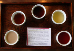 Allie and I had our weekly meeting on a Tea Source sampler day… yum!