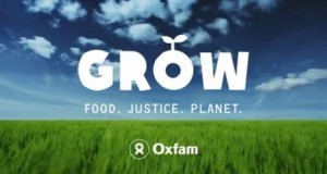 (via Join Oxfam America for World Food Day on October 16, 2012 | Evolving Stacey) As I focus on my health and fitness this year, I'm often reminded how bizarre it is that I'm trying to lose weight and limit my food intake when millions of people are starving around the world. It's humbling to remember just how much my weight loss is a first world problem. As a proud member of Mom Bloggers for Social Good and the Global Team of 200, I am committed to making more sustainable changes in the way my family cooks, eats, and stores our food.