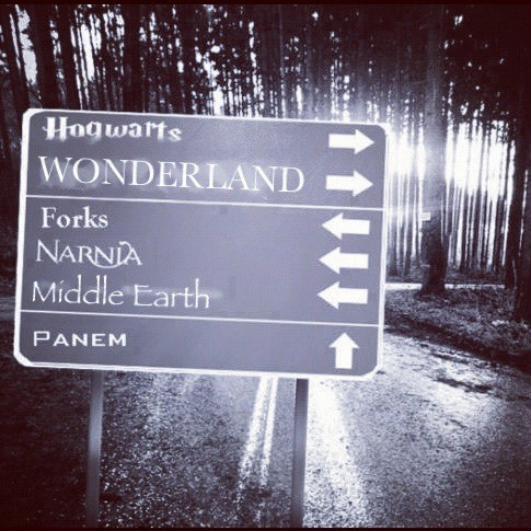 teendotcom:  I would go right. Which path would you take?  No no, it's ok, I don't need to go to Forks, thanks anyway.