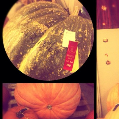 #largest #pumpkin 420lbs #BrigdenFair  (Taken with Instagram)