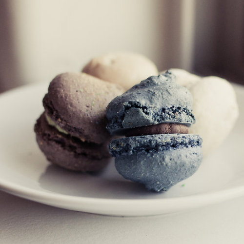 """macaron"" by tara romasanta card or print on RedBubble"