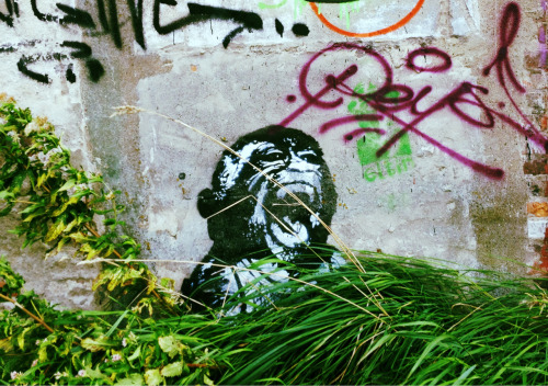 monkey sees, monkey does, monkey screams (Amsterdam, October 2012)
