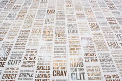 CLITERACY, 100 Natural Laws by Sophia Wallace, 2012, installation detail at Dumbo Art Center, Brooklyn, NY