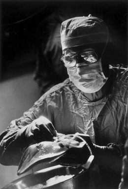 "May 13, 1985: Dr. Thomas Starzl cleans off excess tissue during transplant surgery at Presbyterian Hospital as patient awaits liver. Transplant pioneer Dr. Thomas Starzl has always downplayed his hero image.  In Apr. 1984, the Post-Gazette ran a profile of Dr. Starzl. ""His life, said his family and friends, is like few others, an endless stream of long workdays followed by equally long worknights.""  ""Even those who know him best are amazed at his endurance and perseverance. He seldom needs more than five hours of sleep a night, often going days with only naps on planes between back-to-back operations. His eating pattern is just as sporadic."" He is a workaholic, thriving on his work. ""Starzl thinks nothing of working on a medical article after a night of surgery; he's written more than 500 so far. He forgets none of his patients' names, remembering even the dates they were operated on,"" the article said. ""'He has great sensitivity and awareness. I've seen him cry when he had to tell a family he's lost a son or a daughter,' said Paul Taylor, the University of Colorado's transplant coordinator, who worked with Starzl for two decades.""  (Credit: Unknown) — Mila Sanina"