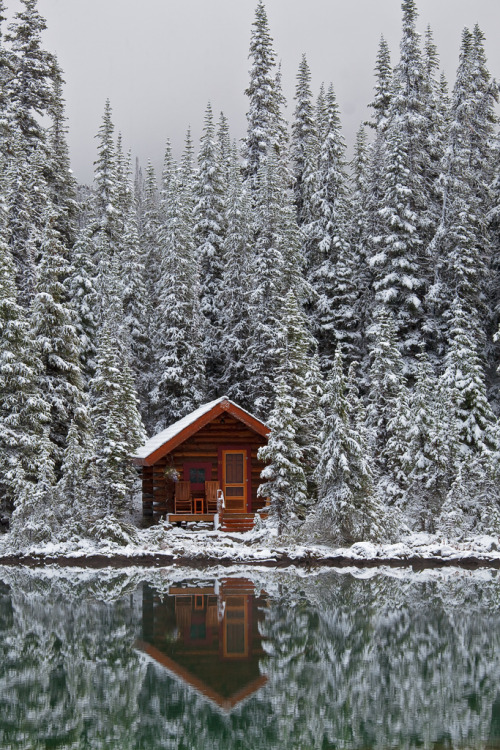 manolescent:  lost-in-the—woods:  Rustic Cabin of Lake O'Hara Lodge in Snow (by Lee Rentz)