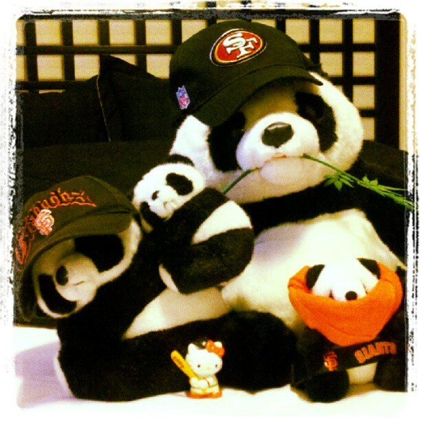 My Panda Family adopted Hello Kitty and raised her well. SF Giants and Niners 4 Life!! (Taken with Instagram)