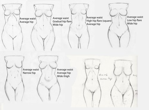 artist-refs:  Hip Study - First Revision by *Ecchi-Senshi