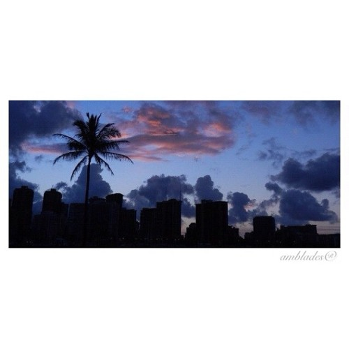 Tree in the city- #waikiki #skyline #sunrise #palmtree #cityscape #thebestshooter #igbs_only #light_seekers #sun_ave #sunset_avenue #sky_collection #sun_collection #ic_sky #silhouette_vets #most_deserving #photowall #mafia_skylove #iskyhub #irox_skyline #thedarkroom #instaworld_love #instahi #instagramhub #cloud_skye #hiig #hawaii — photo taken by am_blades