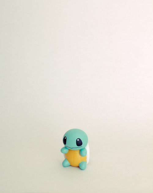kjbphotography:  Cool shit I buy in Japan #2 - Squirtle