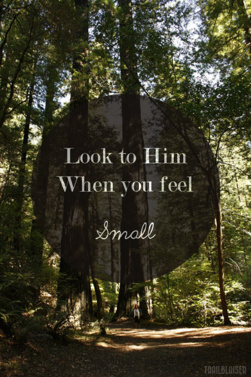 "stop-drop-pray:   Inspired by  ""Seek the Lord and his strength, seek his presence continually!"" 1 Chronicles 16:11 photo features: enormous redwoods from Avenue of the Giants, and then of course, me, being small originally, but microscopic compared to those huge trees."