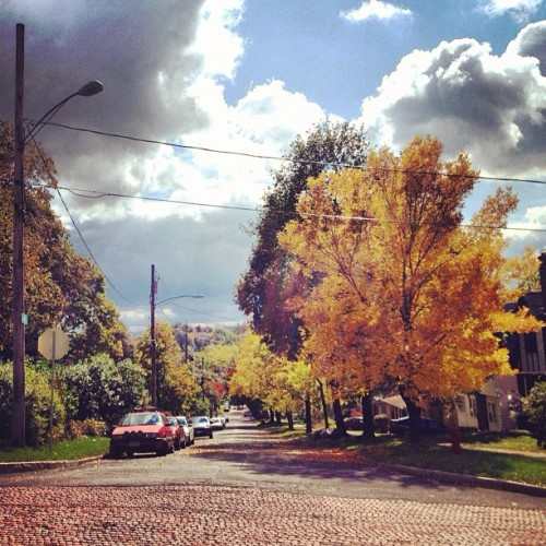 highstrungyounglove:  I wish fall would stay forever (Taken with Instagram)  Not the biggest fan of Fall, but this is a fancy picture.