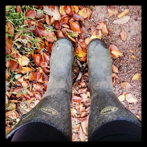 Crunchy leaves are the best! #leaves #autumn #woods #orange #red #wellies  (Taken with Instagram)
