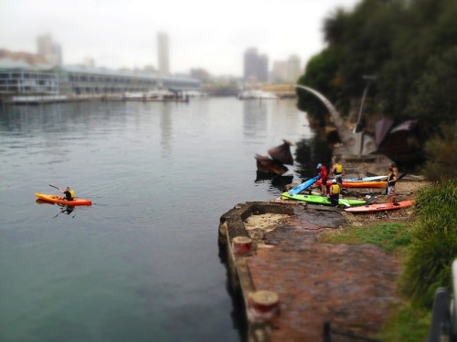 Kayakers Woolloomooloo Bay on Flickr.