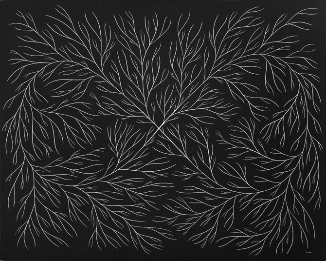 """The Nature of Infinite Growth""Etching on Scratch Board 8""x10""  2011"